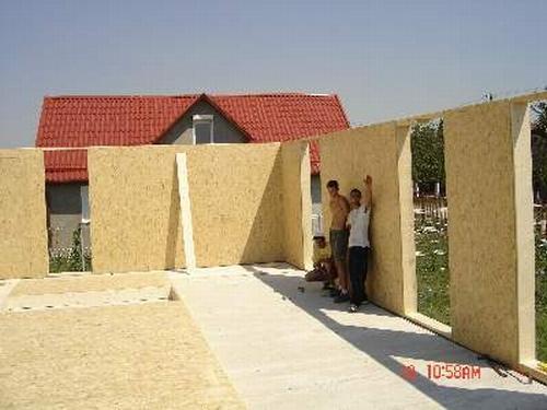 Case panouri lemn Timis