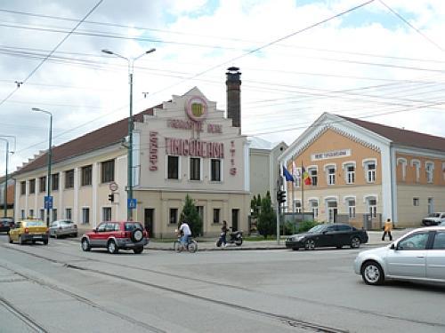 Solutii antiigrasie Timisoara