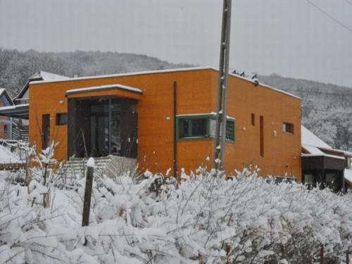 Lazura iarna Timisoara