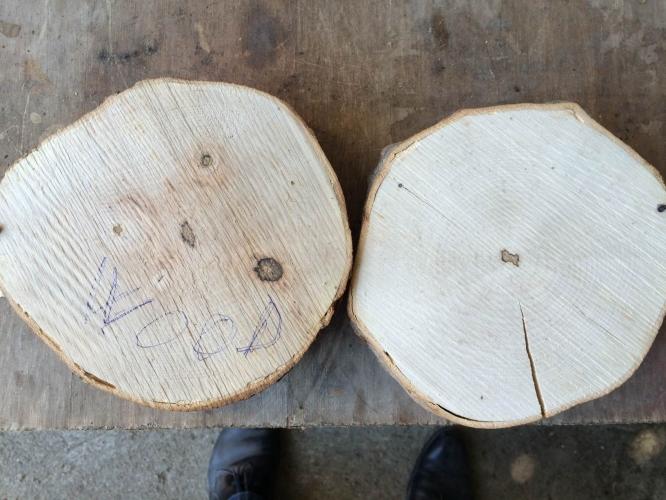 Nano protect pentru lemn