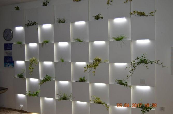 Punct decorativ si led lumina rece