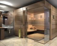 Constructii saune